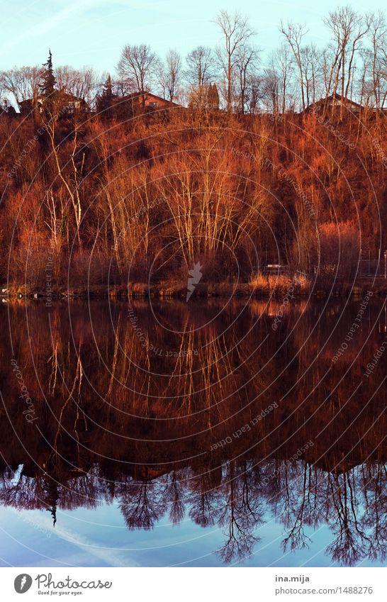 ² Umwelt Natur Wasser nur Himmel Wolken Sonne Sonnenlicht Herbst Schönes Wetter Wald See Fluss Einsamkeit gleich ruhig stagnierend Surrealismus Symmetrie
