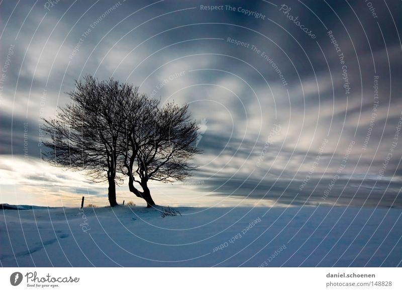 schlechtes Wetter im Anmarsch Weihnachtskarte Himmel Natur weiß Baum Ferien & Urlaub & Reisen Winter Einsamkeit kalt Schnee Berge u. Gebirge Horizont