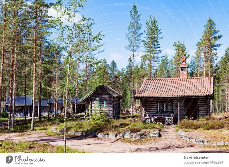 Nordeuropa harmonisch Sauna Ferien & Urlaub & Reisen Tourismus Sommer Natur Schönes Wetter Wald Haus Hütte Architektur Wege & Pfade Erholung Häusliches Leben