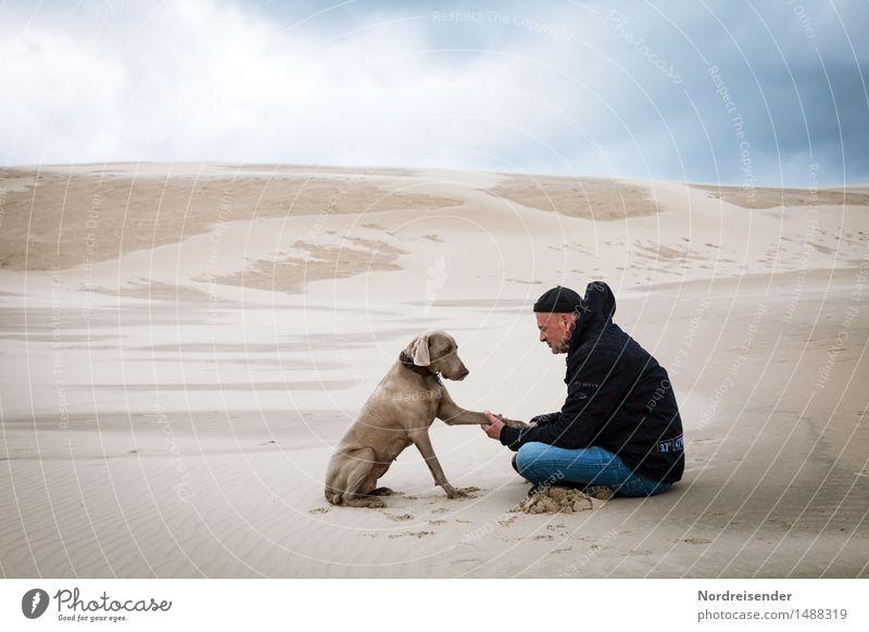 Augenhöhe.... Sinnesorgane Meditation Ferne Mensch Mann Erwachsene Landschaft Urelemente Sand Klima Wüste Tier Hund sitzen Zusammensein Vertrauen Einigkeit