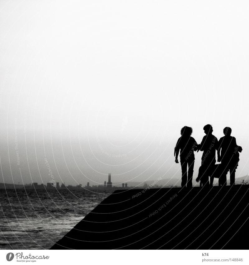 talk Mensch Meer Stadt Freude sprechen Hund Familie & Verwandtschaft See gehen Ausflug Spaziergang Vertrauen Skyline Rede Lücke