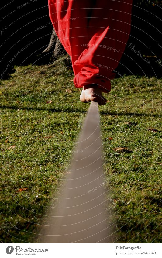 Seiltanz Baum rot schwarz Wiese Spielen Fuß Zufriedenheit Tanzen Schnur Mitte Vertrauen Konzentration Hose Gleichgewicht Gedanke