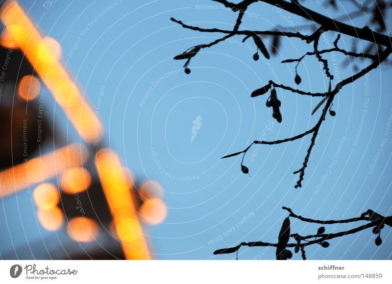 UFO am Stiel Himmel Baum Winter hell Feste & Feiern Ast Punkt obskur Jahrmarkt Fleck Abenddämmerung unheimlich UFO Geäst Lichtpunkt Fluggerät