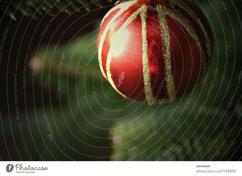 oh du glöckliche Ferien & Urlaub & Reisen Weihnachten & Advent grün Baum rot Feste & Feiern gold Gold Romantik Duft Kugel himmlisch Reichtum Tanne Feiertag