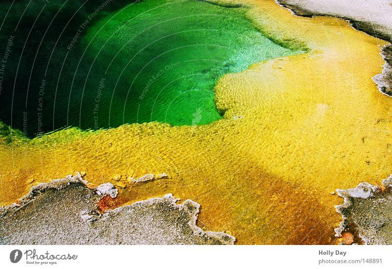 Grüne Wasser sind tief grün gelb Farbe Park USA Schwimmbad Amerika Geruch Am Rand Pfütze Montana Algen Nationalpark intensiv