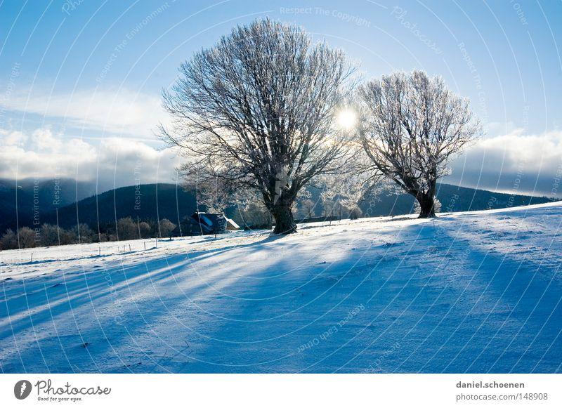 neue Weihnachtskarte 10 Himmel Natur Ferien & Urlaub & Reisen blau weiß Baum Einsamkeit Winter kalt Berge u. Gebirge Schnee Hintergrundbild Deutschland Horizont