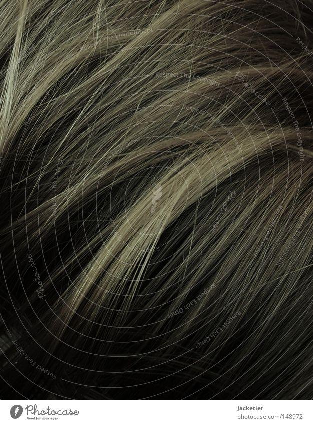 Cheuveux Haare & Frisuren blond Haarsträhne Wuschelkopf