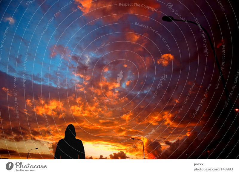 Der Himmel brennt Himmel Wolken Lampe orange gehen Junge Frau Sonnenaufgang Spaziergang Sonnenuntergang Straßenbeleuchtung Abenddämmerung Abschied Desaster Lichtstrahl Himmelskörper & Weltall Verabschiedung