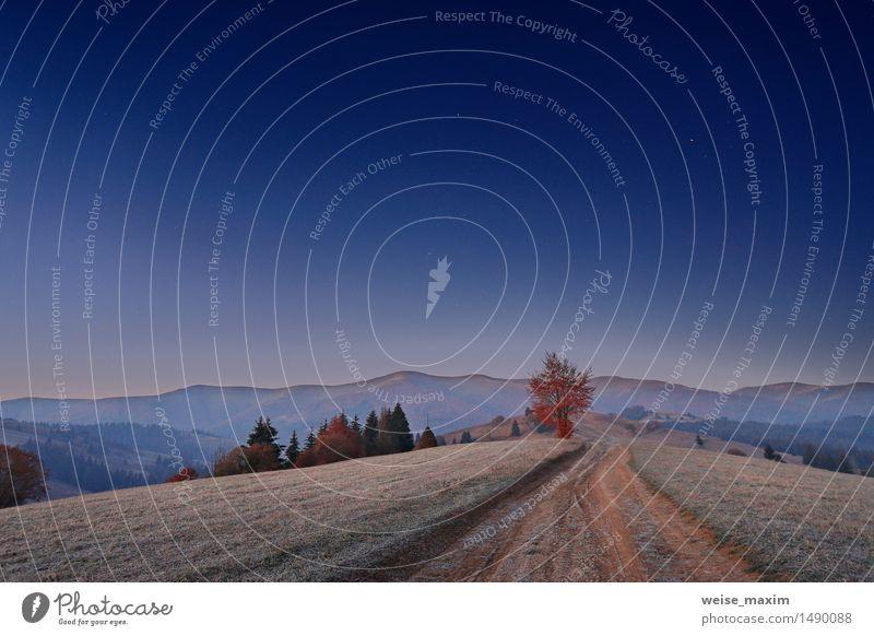 Karpaten-Berge Dämmerung Ferien & Urlaub & Reisen Berge u. Gebirge Natur Landschaft Himmel Nachthimmel Herbst Eis Frost Baum Gras Sträucher Wiese Wald Hügel