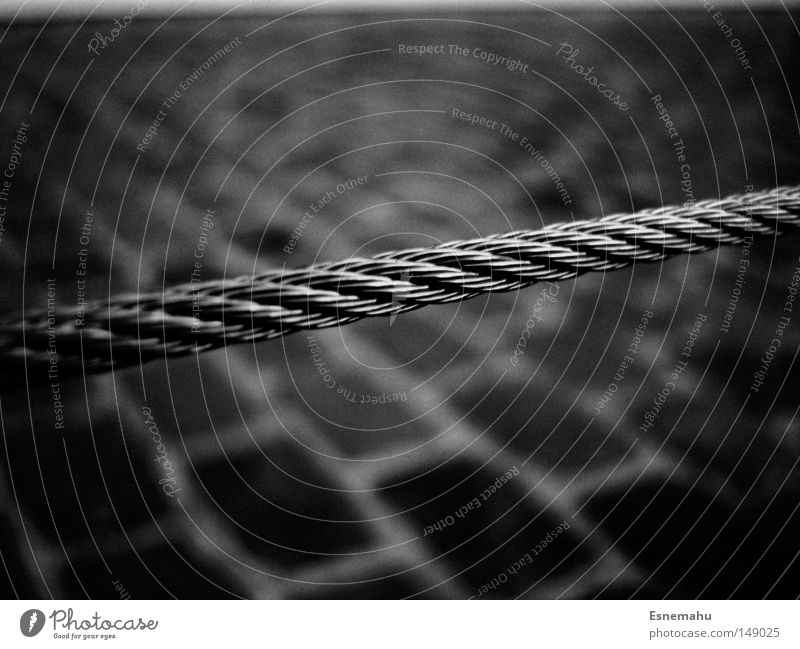 An einem Strang ziehen weiß schwarz dunkel Boden Bodenbelag Fliesen u. Kacheln Schnur Köln Verkehrswege Stahlkabel Flussufer Rhein Rheinauhafen