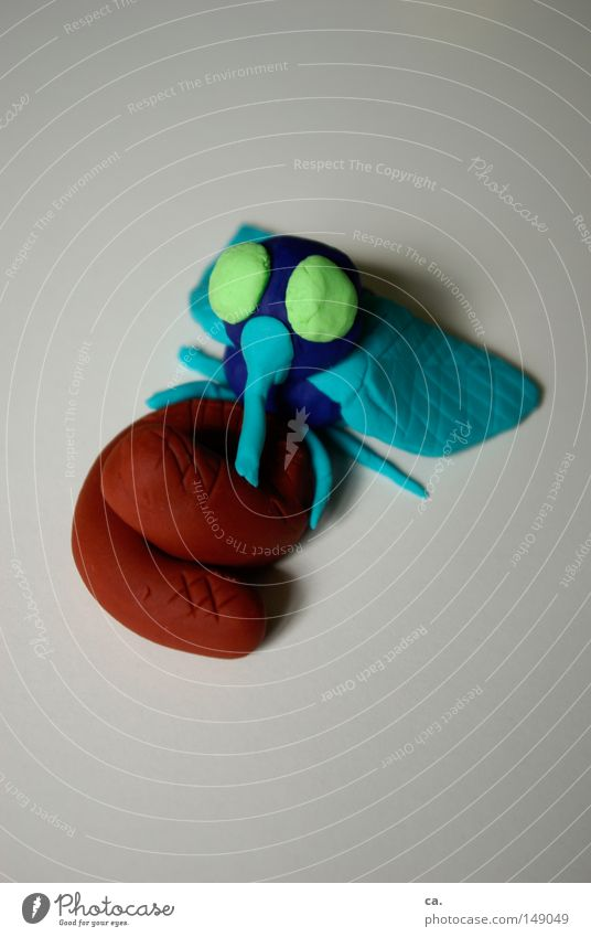 summsummsumm blau Tier braun klein Fliege fliegen sitzen Kreis Insekt Kot obskur Stillleben Geruch Ekel krabbeln Haufen