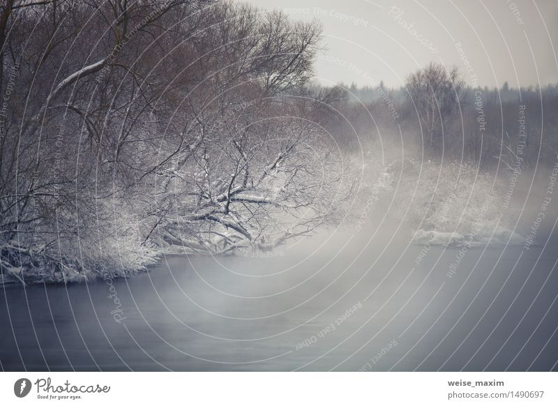 Misty Winter Fluss. Winter Nebel über den Fluss Schnee Natur Landschaft Wasser Wolken Klima Eis Frost Baum Sträucher Wald Küste Svisloch Coolness schön kalt