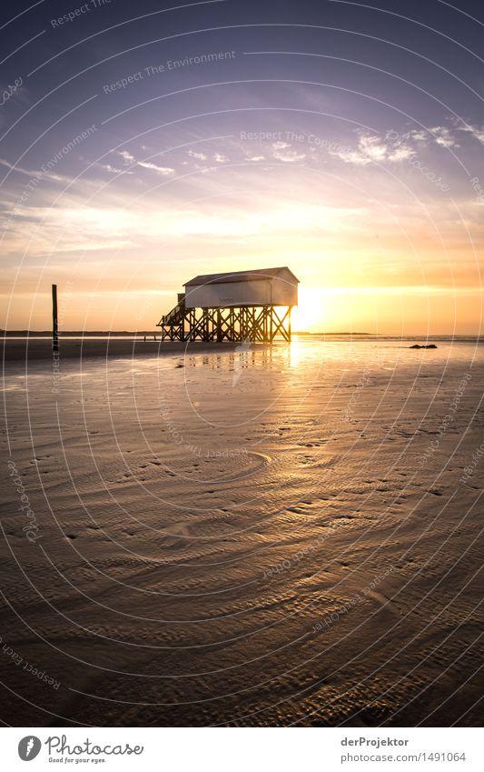 Morgens am Toilettenhäuschen Natur Ferien & Urlaub & Reisen Pflanze blau Meer Landschaft Freude Strand Umwelt gelb Küste Tourismus wandern Wellen Ausflug