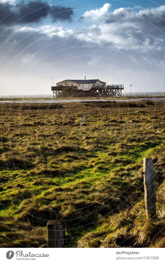 Heute Ruhetag Natur Ferien & Urlaub & Reisen Pflanze Landschaft Haus Ferne Winter Umwelt Gefühle Wiese Gras Küste Freiheit Tourismus Zufriedenheit wandern