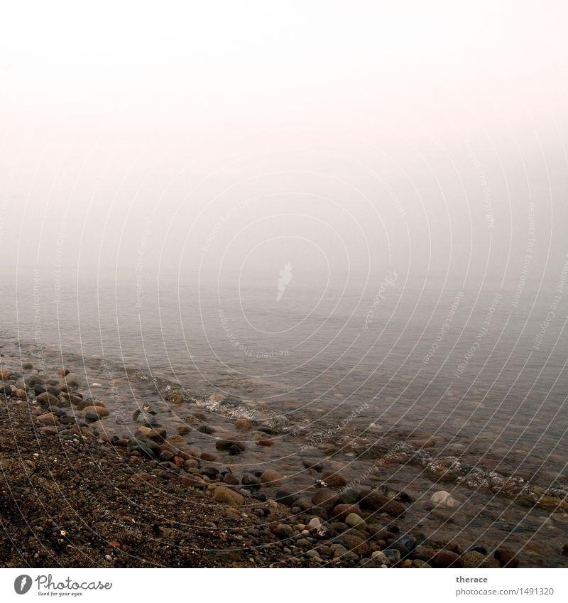 Winterostsee Strand Meer Wellen wandern Landschaft Küste Ostsee Stein Wasser Unendlichkeit trösten dankbar Vorsicht Gelassenheit geduldig ruhig Sehnsucht