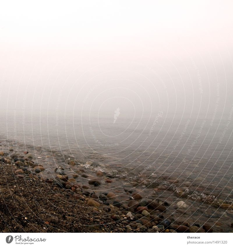 Winterostsee Wasser Meer Erholung Landschaft Einsamkeit ruhig Strand Küste Stein Horizont wandern Wellen Abenteuer Ewigkeit Unendlichkeit