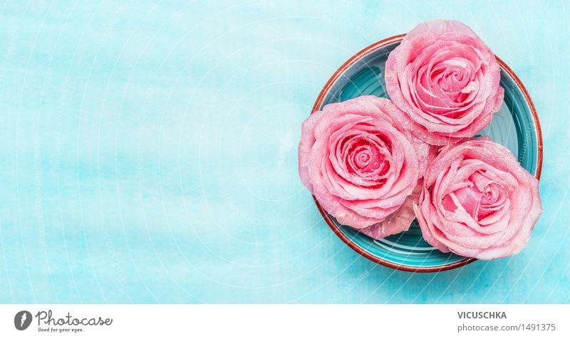 Schüssel mit Wasser und rosa Rosen Blumen Stil Design schön Wellness Erholung Duft Spa Garten Dekoration & Verzierung Natur Blüte aromatisch Hintergrundbild