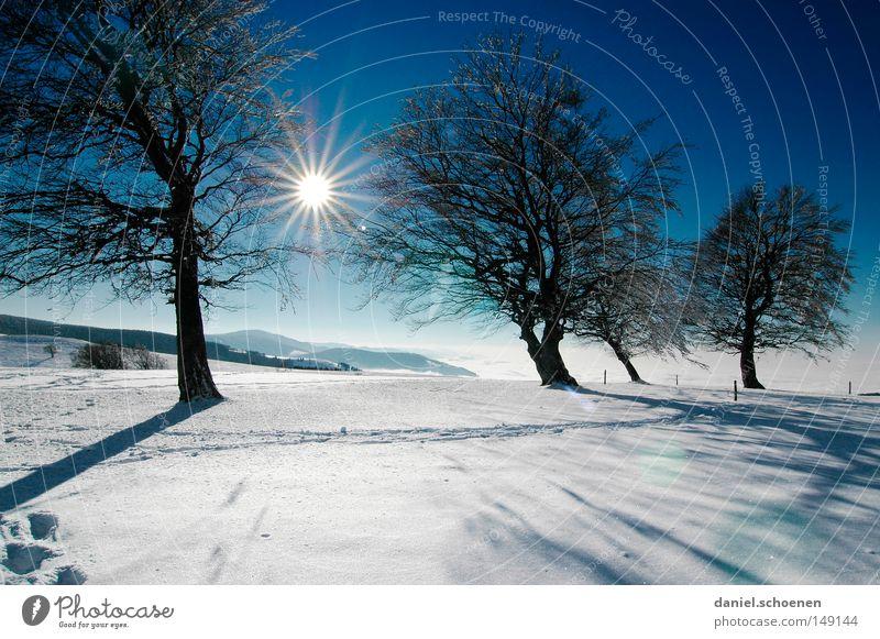 neue Weihnachtskarte 11 Sonnenuntergang Winter Schnee Schwarzwald weiß Tiefschnee wandern Freizeit & Hobby Ferien & Urlaub & Reisen Hintergrundbild Baum