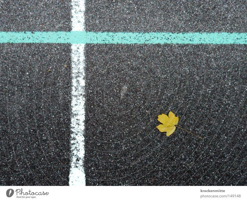 Nature Morte Blatt gelb Herbst liegen Linie weiß hell-blau Asphalt Boden Kreuz Christliches Kreuz kreuzen durchkreuzen Jahreszeiten herbstlich Spielfeld