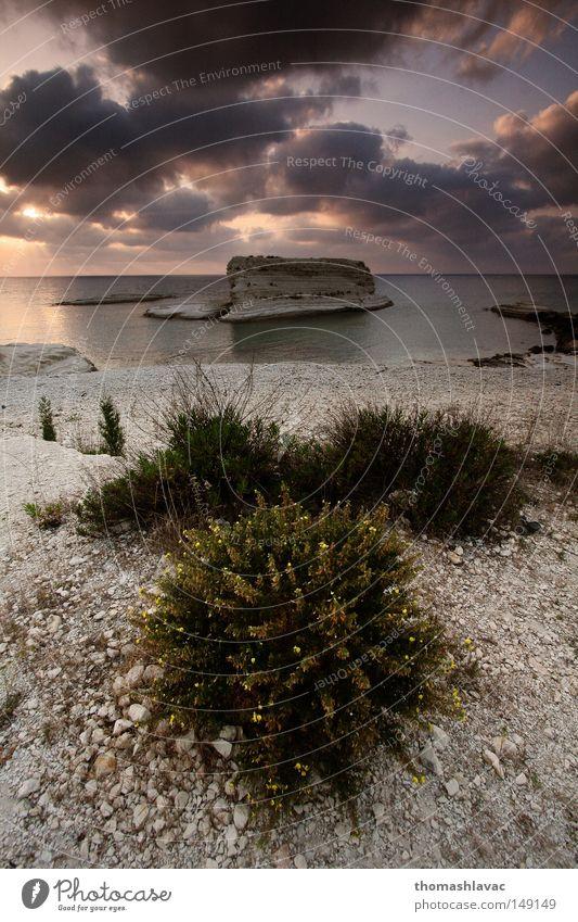 Himmel Meer Pflanze Sommer Strand Wolken Stein Küste Asien Syrien Mittelmeer Naher und Mittlerer Osten