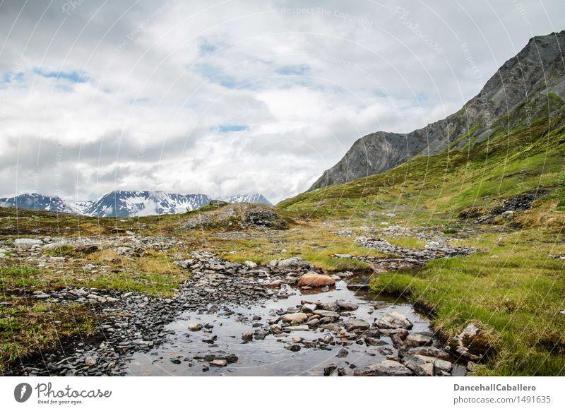 Wild Alaska Ferien & Urlaub & Reisen Tourismus Ferne Expedition Camping Berge u. Gebirge wandern Natur Landschaft Pflanze Wasser Himmel Wolken Frühling Sommer