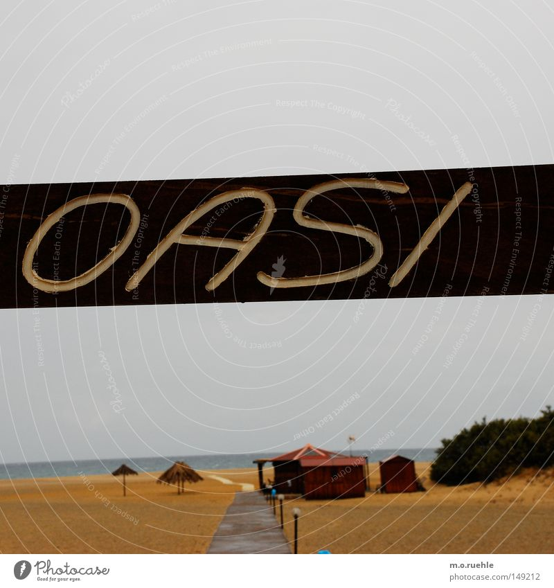 un lido di Sardegna Meer Strand Einsamkeit Herbst Holz Sand Küste nass Schilder & Markierungen Italien Regenschirm Hütte Sonnenschirm feucht Schirm trüb