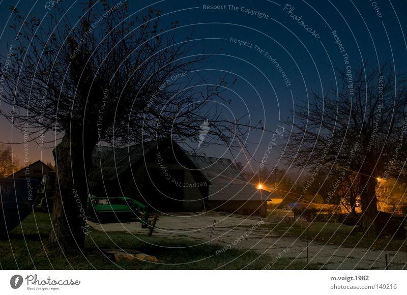wo sich fuchs und hase... Baum blau ruhig kalt Herbst Beleuchtung Stern Klarheit Bauernhof Dorf Idylle Straßenbeleuchtung Gerät ländlich Wolkenloser Himmel