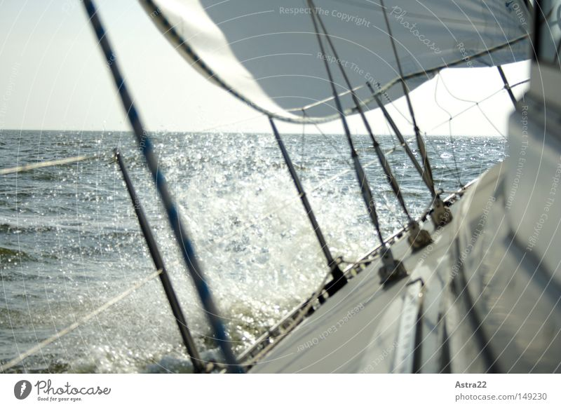 Seegang Himmel Wasser grün Sonne Meer Wolken Ferne Herbst Holz Wasserfahrzeug Wind nass Seil hoch Wassertropfen Sport