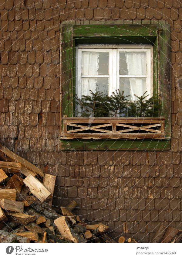 28.12. Weihnachten & Advent grün Baum Haus kalt Fenster Holz Glück Gebäude braun Häusliches Leben außergewöhnlich Schutz Bauernhof historisch