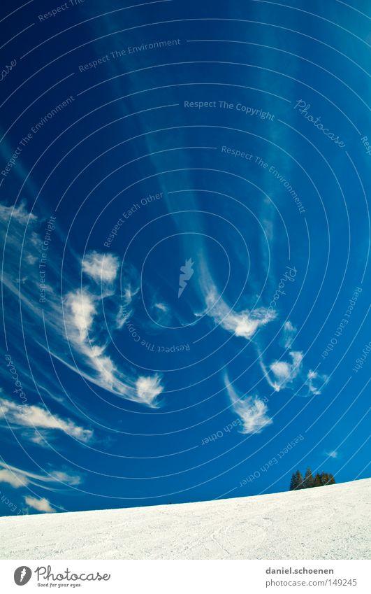 Hochkantwinterhimmelimschwarzwald Himmel Natur blau weiß Baum Ferien & Urlaub & Reisen Winter Einsamkeit Wolken kalt Schnee Berge u. Gebirge Horizont Deutschland Wetter Hintergrundbild