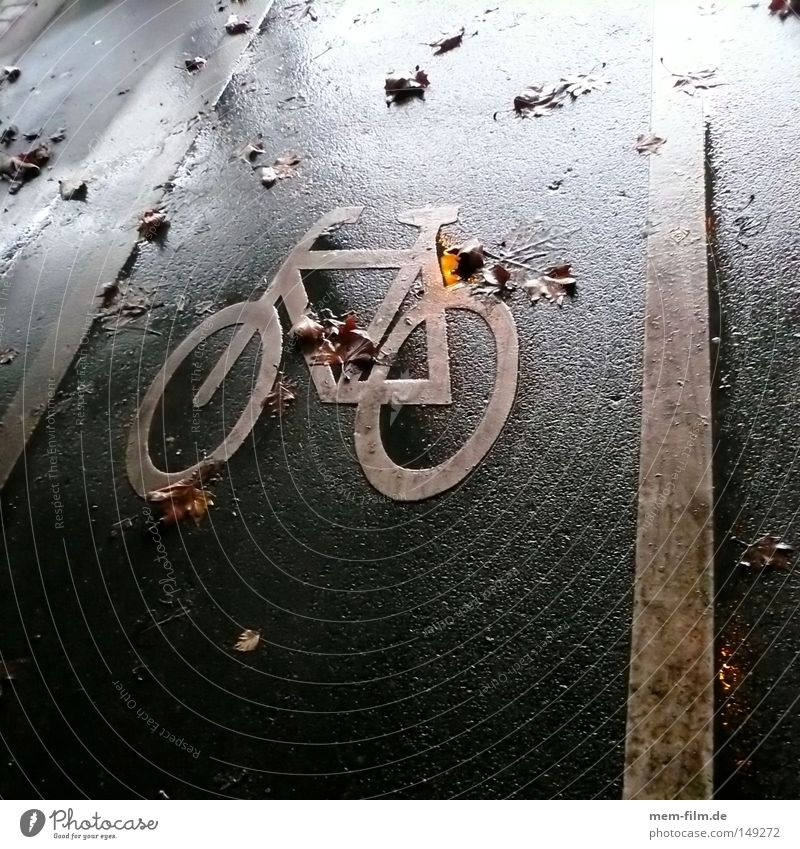 herbstrad Fahrrad Herbst nass Oktober November Dezember schlechtes Wetter Fahrradweg Schilder & Markierungen Logo Verkehrsmittel Zusteller Kurier Straßenbelag