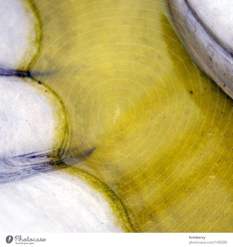 katzenklo Wasser gelb Farbe Garten Stein Farbstoff Park Design Innenarchitektur Brunnen Flüssigkeit Denkmal Pfütze Chemie Marmor Marmorfelsen