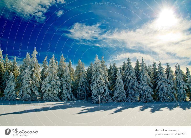 neue Weihnachtskarte 12 Himmel Natur blau weiß Baum Ferien & Urlaub & Reisen Sonne Winter Einsamkeit kalt Schnee Berge u. Gebirge Horizont Deutschland Wetter