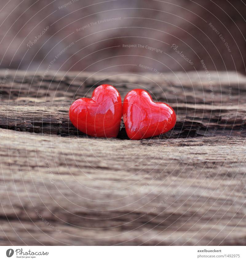 Zwei Herzen Valentinstag Natur Winter Dekoration & Verzierung Kitsch Krimskrams Stein Holz Zeichen Liebe glänzend braun rot Gefühle Sympathie Freundschaft