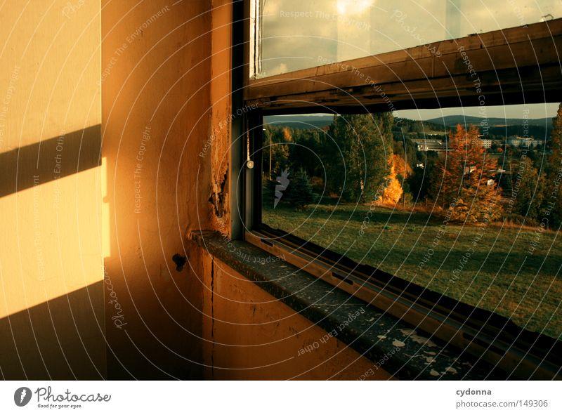 Vergänglichkeit Natur schön alt Einsamkeit Farbe Herbst Wand Gefühle Fenster Gebäude Landschaft Raum Beleuchtung Hintergrundbild Aussicht Spuren