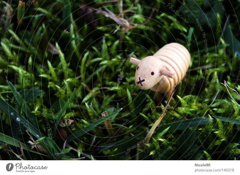 Mit Schaaaf... Einsamkeit Wiese Ostern Dekoration & Verzierung Moos Schaf Miniatur Holzstatue