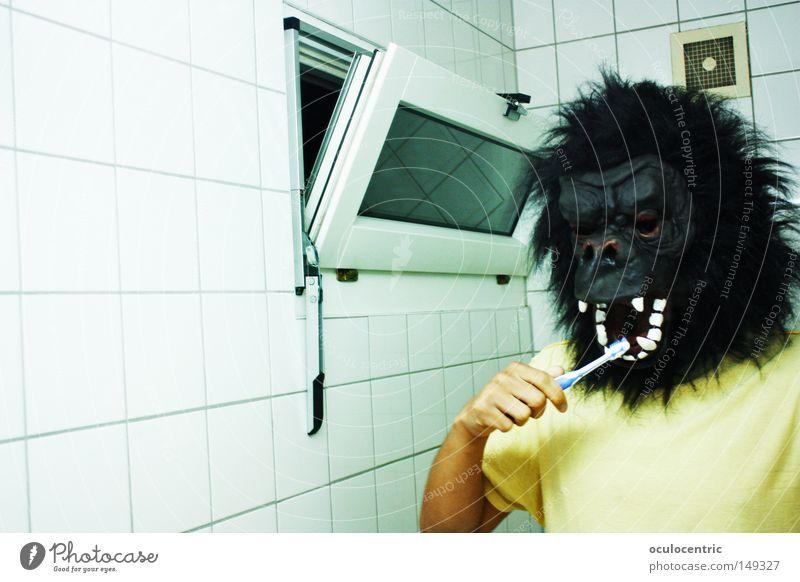 John Teethbrush Bad Spiegel Fliesen u. Kacheln Säugetier Selbstportrait Affen Zahnbürste