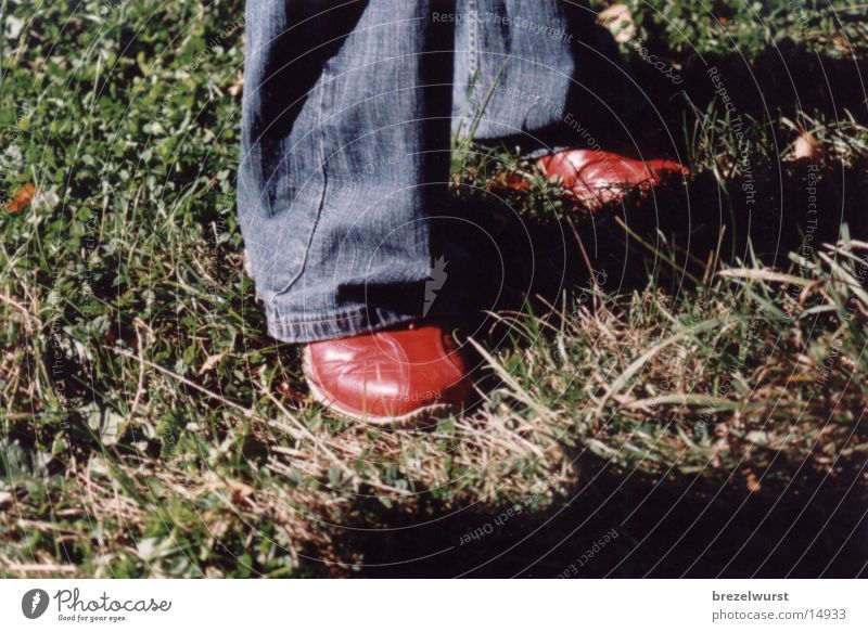 rote Schuhe Mensch rot Gras Fuß Schuhe