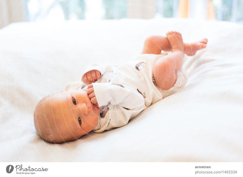 Happy Baby Gesicht Erholung Mensch maskulin 1 0-12 Monate fliegen weiß Vertrauen Warmherzigkeit Farbfoto Gedeckte Farben Innenaufnahme Studioaufnahme