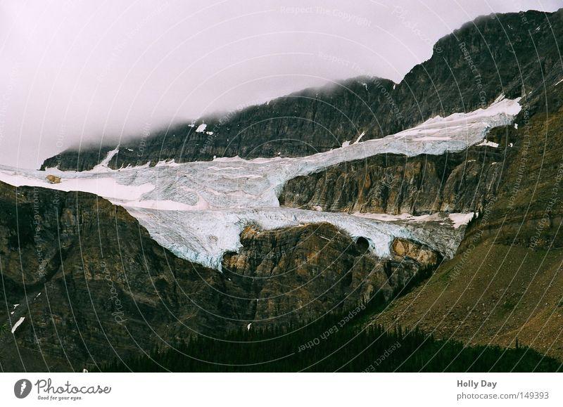 Krähenfuß Wolken dunkel kalt Schnee Berge u. Gebirge oben hell Eis Nebel Kanada Klimawandel Gletscher Nationalpark karg schmelzen