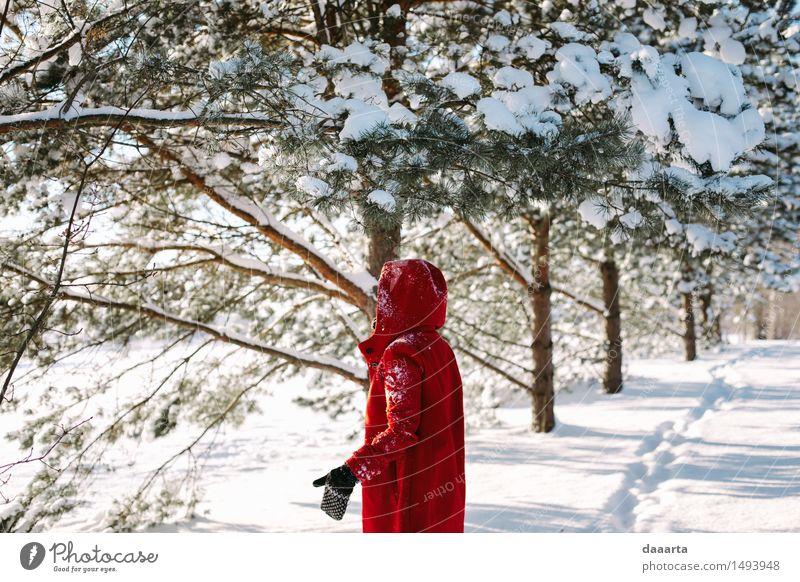 Erholung rot Freude Winter Leben Schnee feminin Stil Spielen Lifestyle Stimmung wild Freizeit & Hobby elegant Fröhlichkeit Ausflug