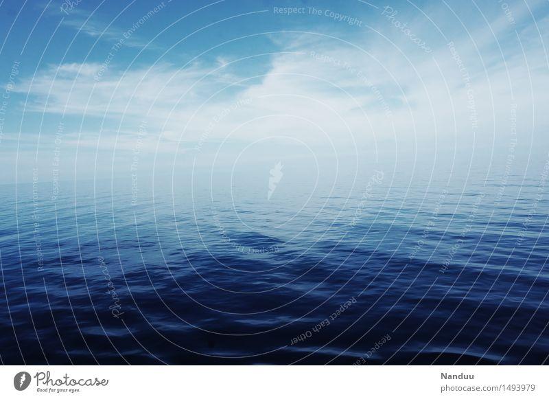 Ewigkeit Umwelt Natur Urelemente Himmel Meer Golf von Mexico ästhetisch kalt blau Hoffnung ruhig Horizont Farbfoto Außenaufnahme Menschenleer Textfreiraum oben