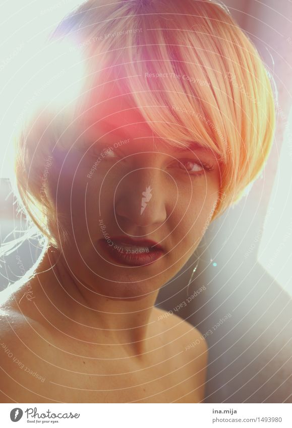 Frau mit blonden kurzen Haaren und rotem Lippenstift im Gegenlicht Mensch feminin Erwachsene Gesicht 1 18-30 Jahre Jugendliche 30-45 Jahre Haare & Frisuren