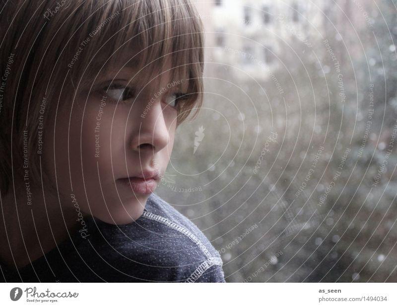 Melancholie Mensch Kind Natur blau ruhig Winter dunkel Fenster Gesicht Umwelt Leben Traurigkeit Gefühle Herbst Schnee Junge