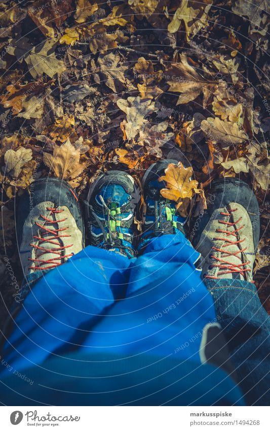 herbstlaub sammeln Mensch Kind Ferien & Urlaub & Reisen Jugendliche Erholung Blatt Freude 18-30 Jahre Erwachsene Herbst Junge Spielen Glück