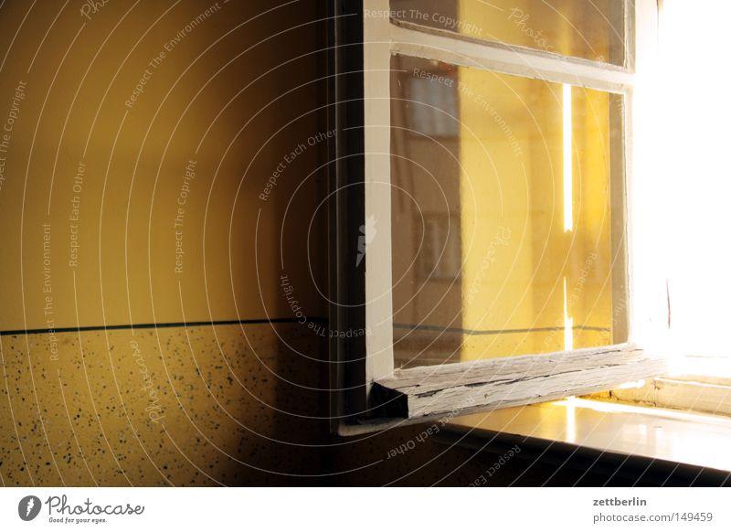 Zu Besuch bei prokop Fenster Glas Fensterscheibe Scheibe Glasscheibe offen lüften Luft Haus Treppenhaus Stadthaus Mieter Vermieter Fensterbrett Fensterfront