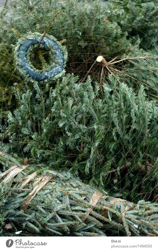aus der Baum Weihnachten & Advent dehydrieren alt grün verschwenden Verfall Vergänglichkeit Weihnachtsbaum wegwerfen entsorgen Adventskranz Haufen Stapel