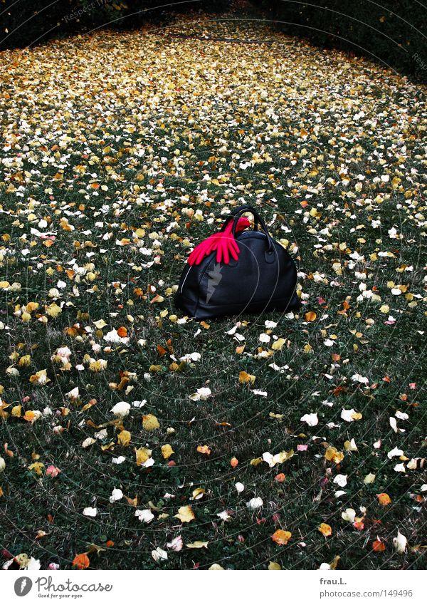 Besuch Reisetasche Handschuhe rot Gras Blatt Besucher besuchen Abschied Ferien & Urlaub & Reisen reisend unterwegs Sackgasse Friedhof Rasen Trauer Verzweiflung