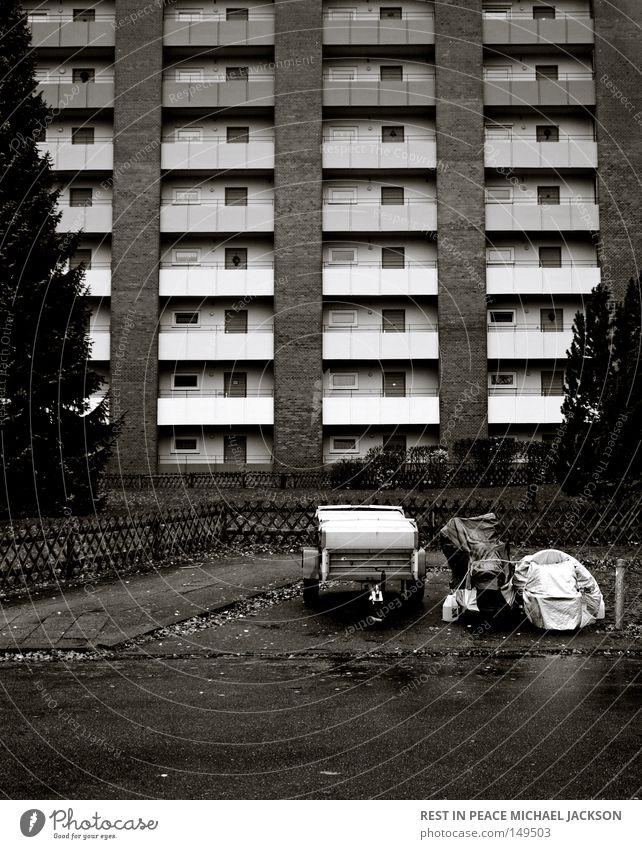 [URBAN_RESEARCH-01] weiß Stadt Baum Blatt schwarz Straße kalt Fenster Herbst grau Architektur Wege & Pfade Mauer Gebäude Regen