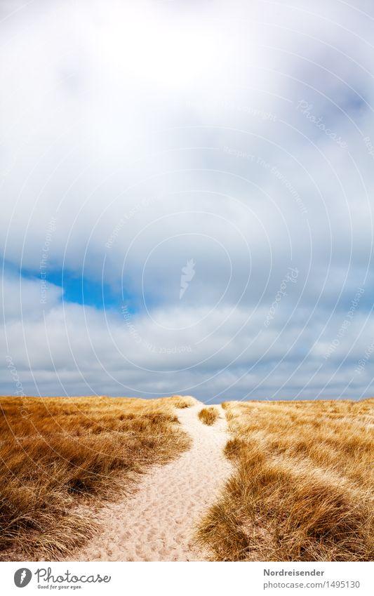 Weg in den Dünen Ferien & Urlaub & Reisen Meer Natur Landschaft Sand Himmel Wolken Sommer Schönes Wetter Wind Gras Nordsee Wege & Pfade wandern Duft ruhig